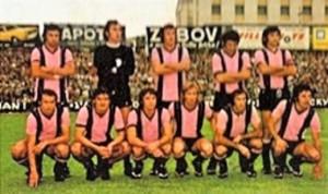 Il Palermo 1973-74 foto da figurina Panini dell'epoca.