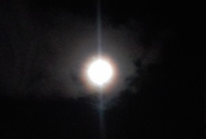 La super luna splende lo stesso. Anche se non riusciamo a coglierla con una foto telefonica