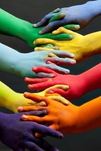 Diversity by Schlegel Doyle