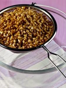 grano-lessato-sale e pepe