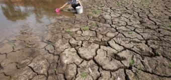 Global Risk Report 2016: al primo posto ambiente e migrazioni involontarie