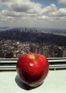 New York Big Apple foto tratta da: CC BY-SA 3.0, https://commons.wikimedia.org/w/index.php?curid=179493
