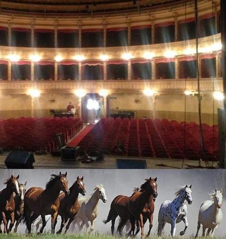 Cavalli e Teatro Biondo