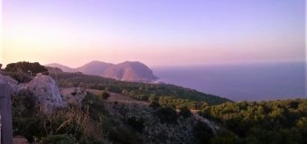 Aldo Penna, cinque proposte a 5 stelle per parchi e verde a Palermo