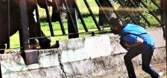 Venezuela, la polizia di Maduro uccide sparando a bruciapelo sui ragazzini