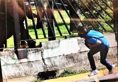 La polizia venezuelana spara a bruciapelo1 2