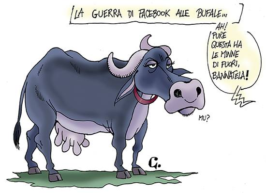 La guerra di Facebook alle bufale
