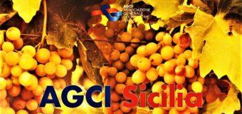 Cooperazione e sviluppo in Sicilia. Quale futuro? Se ne parla al congresso AGCI