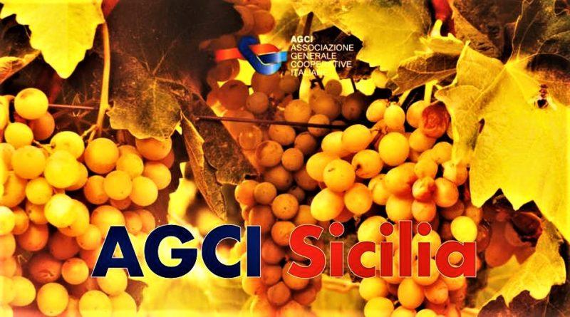 AGCI Sicilia con Uva T