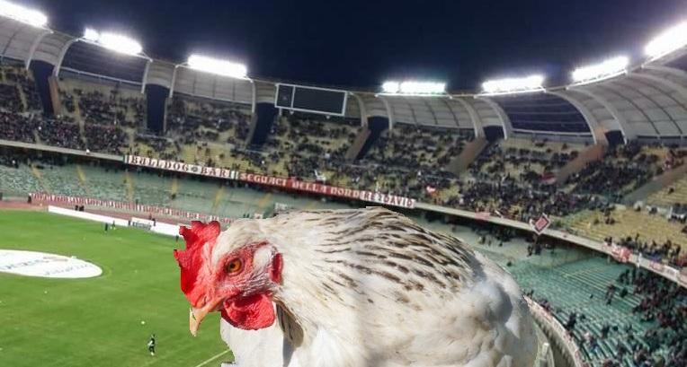 Stadio San Nicola Bari 2 con galletto spennato