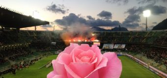 Calciomercato Palermo. Rosa che vince non si cambia