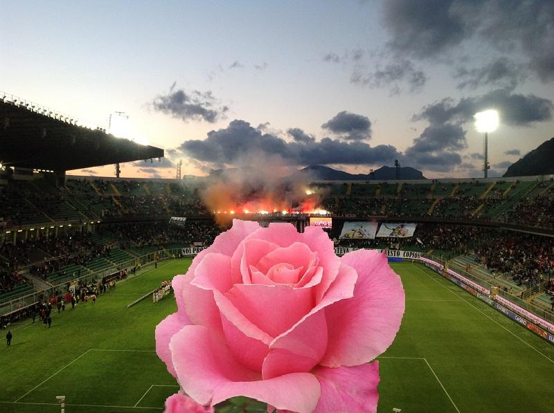 Stadio Barbera giorno Promozione 2014 con rosa foto e collage di Gabriele Bonafede M