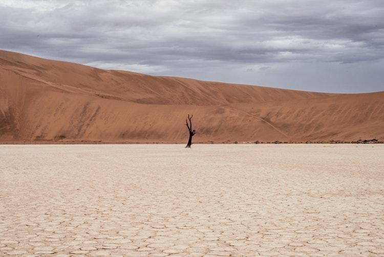Deserto photo-1448831338187-78296e6fdc4d