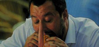 Calano fatturato e PIL ma aumentano i nasi di Salvini e Di Maio
