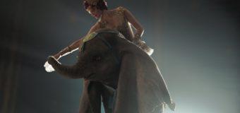 Dumbo, un elefante che vola e poco altro