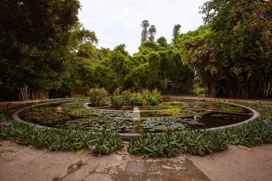 Manifesta 12 Palermo Orto Botanico, 2017 Photo by CAVE Studio