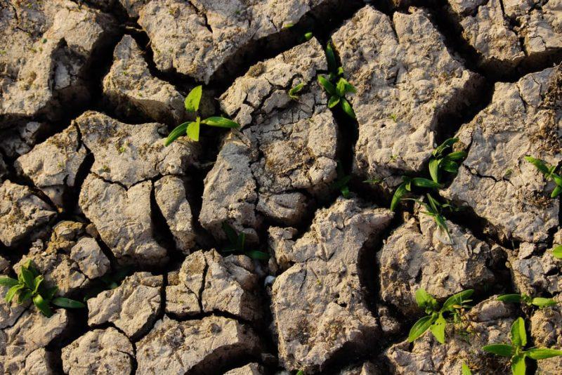 Arte di potenziare la resilienza