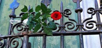 23 maggio: voglio commemorare Giovanni Falcone con rosa e bandiera