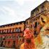 Regione Sicilia: ingaggiate mille volpi per proteggere gli allevamenti di polli