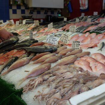 British fish jonathan-noack-f1jcqskqsBM-unsplash