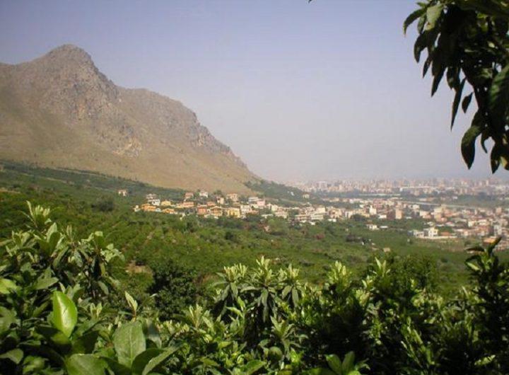 Ciaculli e Monte Grifone alle porte di Palermo M